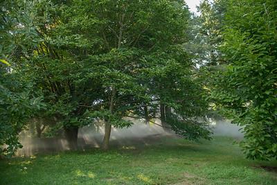 Arboretum0823-3