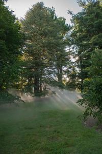 Arboretum0823-12