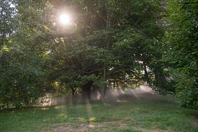 Arboretum0823-15