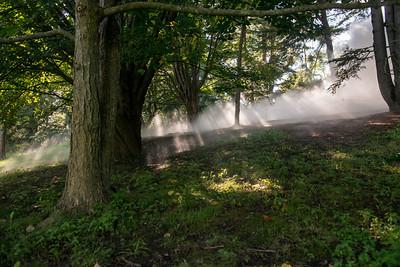 Arboretum0823-9