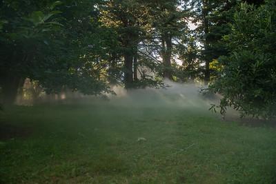 Arboretum0823-13