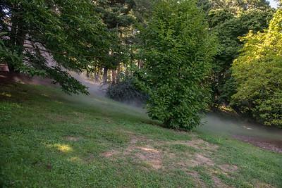 Arboretum0823-21
