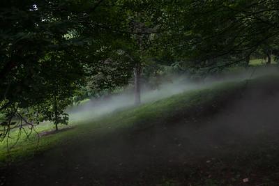 Arboretum-23