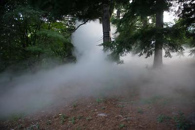 Arboretum-21