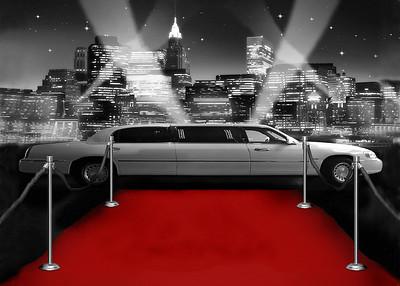 Red Carpet & Celebrities 008