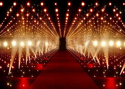 Red Carpet & Celebrities 001