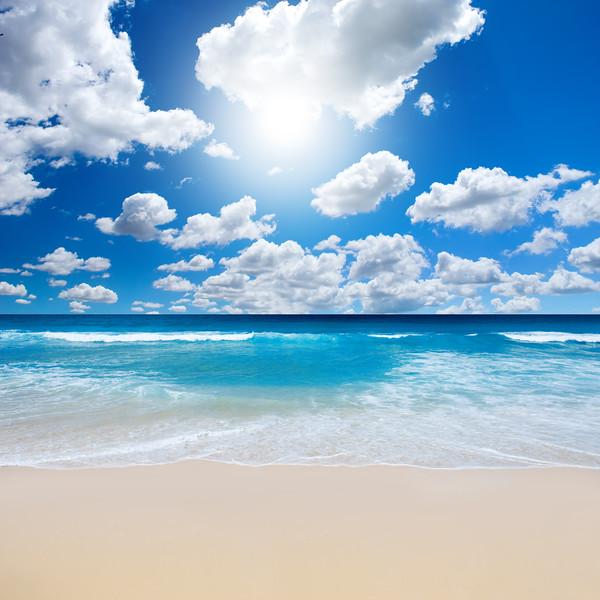 Gorgeous Beach Landscape