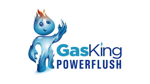 Gas King Powerflush