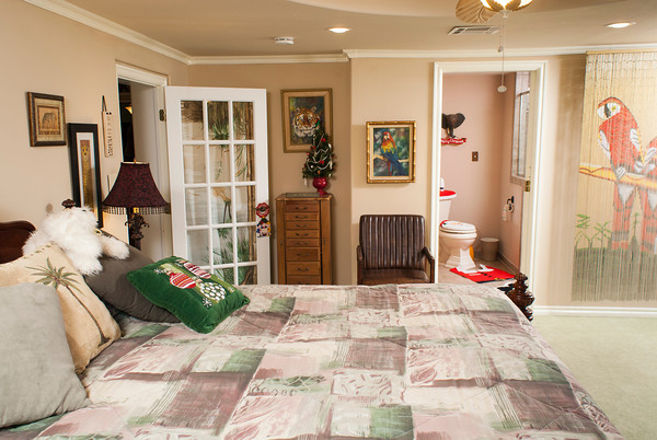 The master bedroom is decorated in a jungle theme, including images of tropical denizens such as parrots and jungle cats.