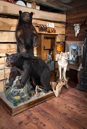 Stuffed critters occupy displays throughout the buildings on the Garrett ranch, including two bears and a wolf in the corner of the saloon nearest the Longhorn Mercantile.