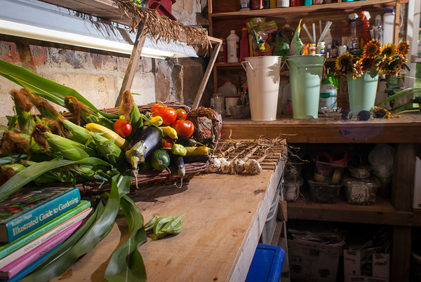 Trudy Sudberry has collected produce and flowers from the gardens at La Ferme and arranged them in her garden shed. Her gardens are designed to produce both bounty and beauty.