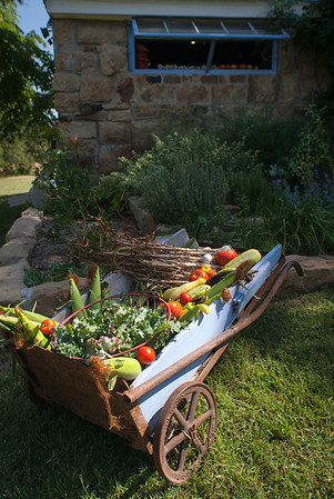 A blue-painted box cart holds some of the bounty from the Sudberry's vegetable garden.