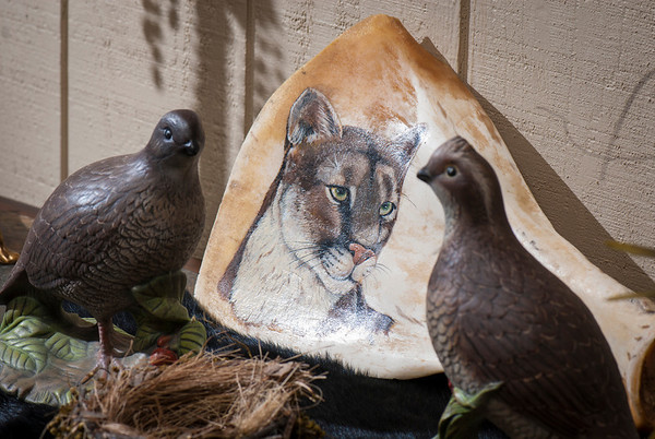A cougar painted on bone peers from between a pair of quail in Pat Garret's man-cave. Wildlife, both in art and taxidermy, occupies a prominent place in the décor of Pat and Belienda Garrett's ranch.