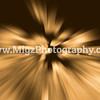 Buffalo Photographer (14)