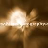 Buffalo Photographer (21)