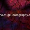 Migz Event (5)