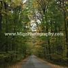 Migz Photography (7)