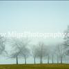 Migz Photography (14)