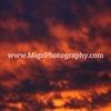 Migz Photography (5)