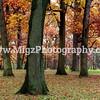 Migz Photography (4)