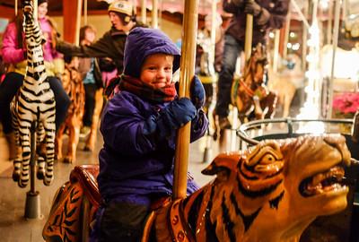 Lucien on Tiger