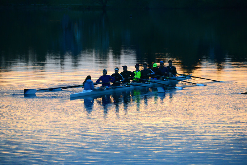 Morning Row