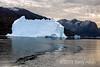 Iceberg and sea ice