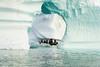 Zodiac cruising among the icebergs, Rypefjord, Scoresby Sund, East Greenland