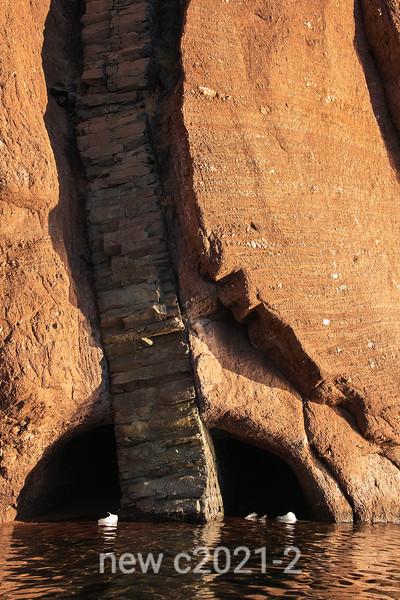 Columnar basaltic rock intruding through red sandstone conglomerate, Rode O, Rodefjord, Scoresby Sund, Greenland