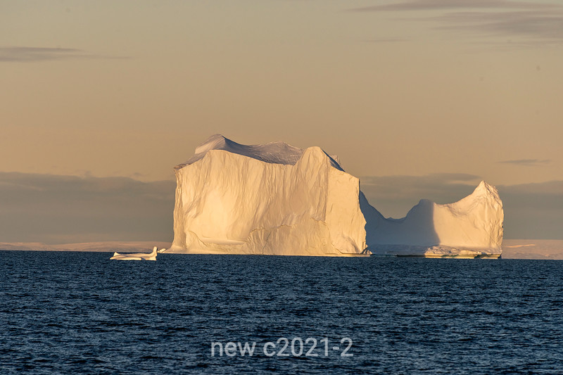 Sunset, outer Scoressby Sund, where the big bergs gather, East Greenland
