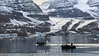 Zodiacs by the north arm of the Bredegletcher, Vikingebugt Inlet, Scoresby Sund, Greenland