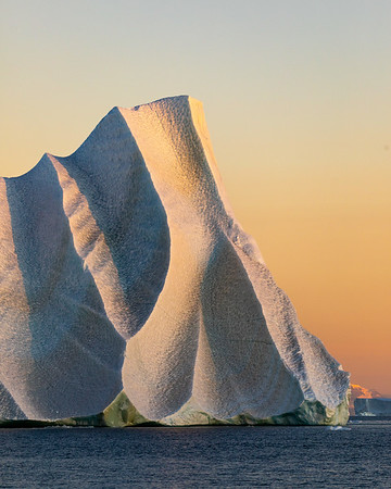 Greenland landscapes, icebergs, and musk ox
