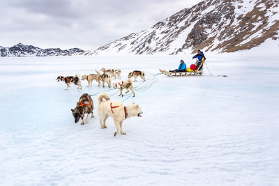Sledge on sea ice near Apusiaajik, East Greenland