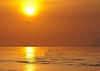 Beach- (47)