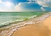 Beach- (50)