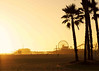 Beach- (10)