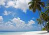 Beach- (7)