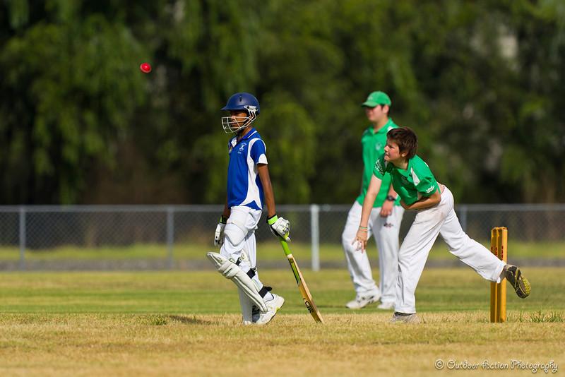 Cricket_050211-16