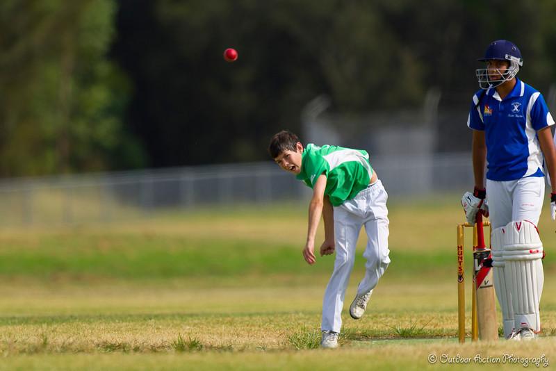 Cricket_050211-45