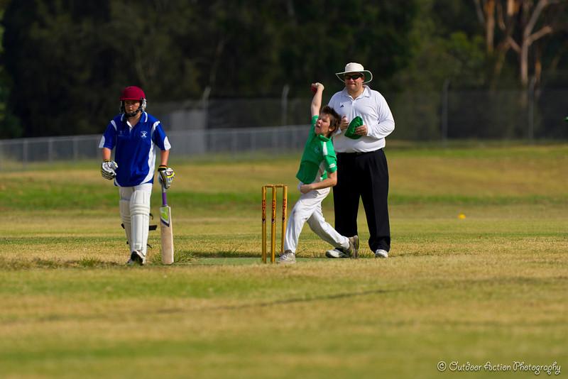 Cricket_050211-3