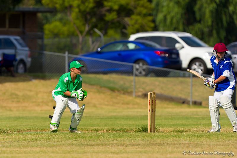 Cricket_050211-33