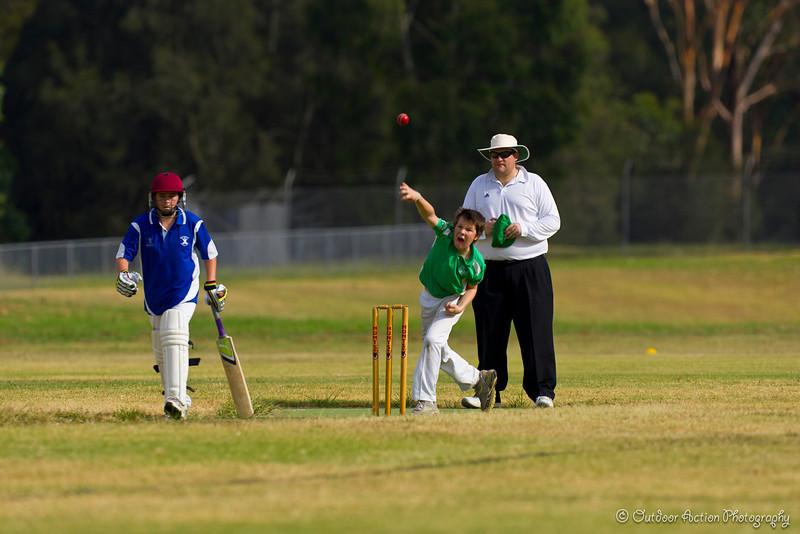 Cricket_050211-6