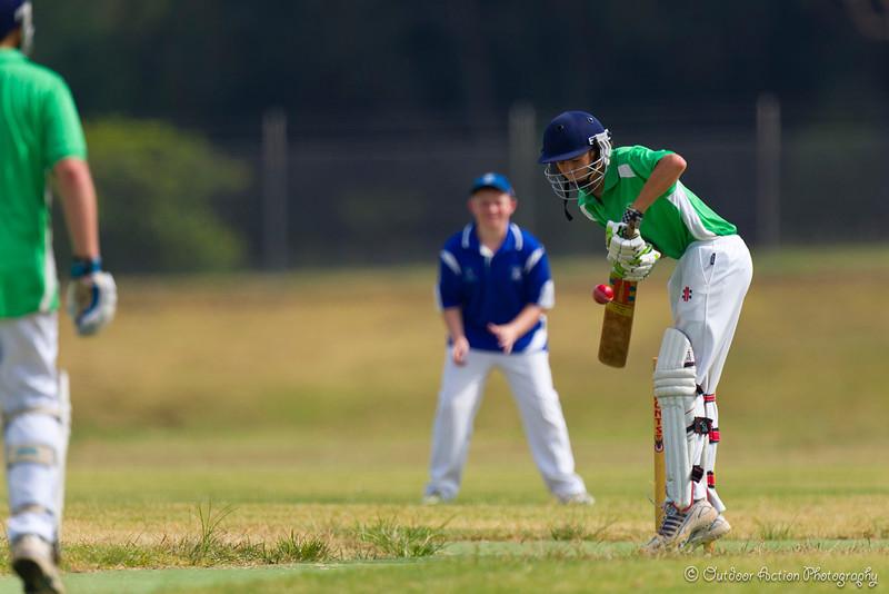 Cricket_050211-90