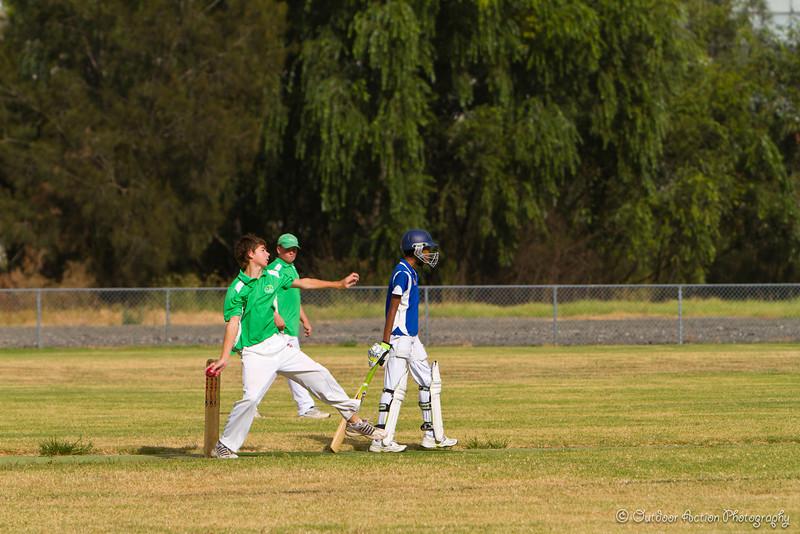 Cricket_050211-4
