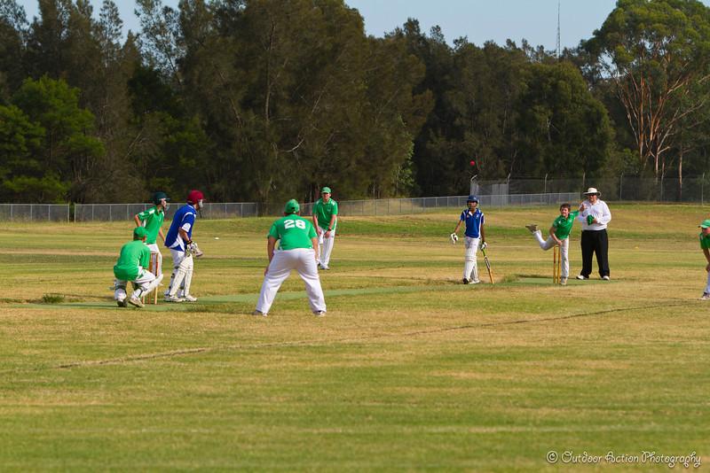 Cricket_050211-2