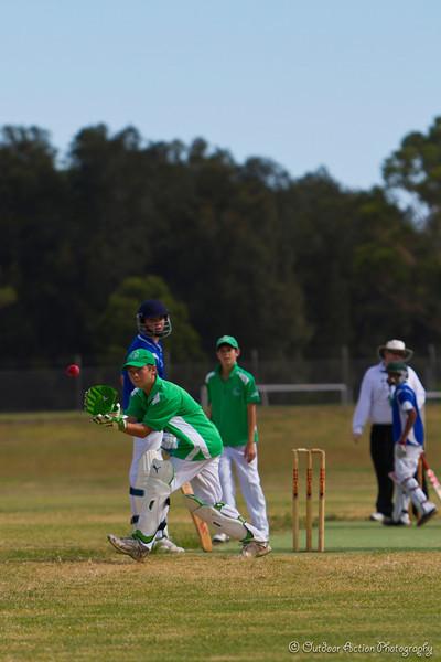 Cricket_050211-89