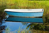 """Blue Skiff, Maine,"" color photo"