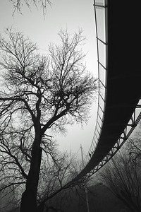 Liberty Bridge in fog BW - Version 2