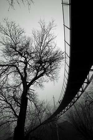Liberty Bridge in fog BW