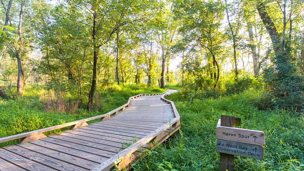 Conestee Nature Trail